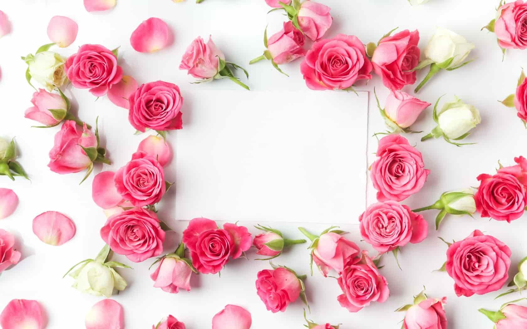 Для музыкального, открытки без надписей с розами